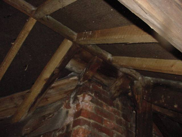 Conditions in this roof are ideal for dry rot